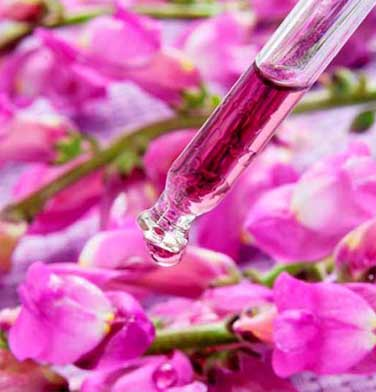 terapia flores de bach gijon